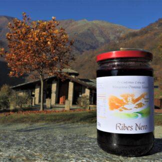 Ribes Nero – Confettura Extra - Standard - (ADTCNF031W)