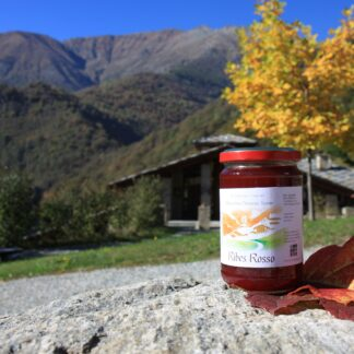 Ribes Rosso – Confettura Extra - Standard - (ADTCNF032W)